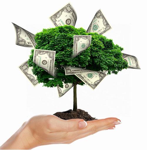 récolte arbre billets